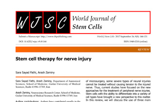 Stem cell therapy for nerve injury Innate Healthcare