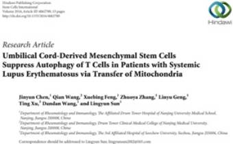 Umbilical Cord-Derived Mesenchymal Stem Cells Suppress Autophagy of T Cells in Patients with Systemic Lupus Erythematosus via Transfer of Mitochondria Innate Healthcare