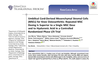 Umbilical Cord-Derived Mesenchymal Stromal Cells (MSCs) for Knee Osteoarthritis- Repeated MSC Dosing Is Superior to a Single MSC Dose and to Hyaluronic Acid in a Controlled Randomized Phase I_II Trial Innate Healthcare
